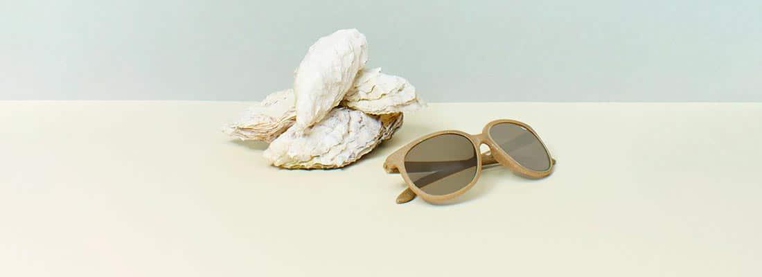 lunettes-en-coquillage-charlaine-croguennec-banniere-light