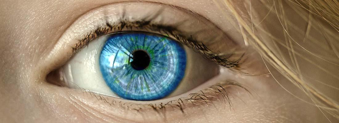 focus-lunettes-casse-banniere-01