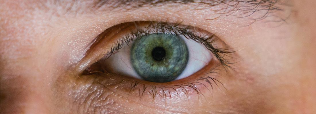 focus-lunettes-lentilles-cohabitation-jordan-whitfield-banniere